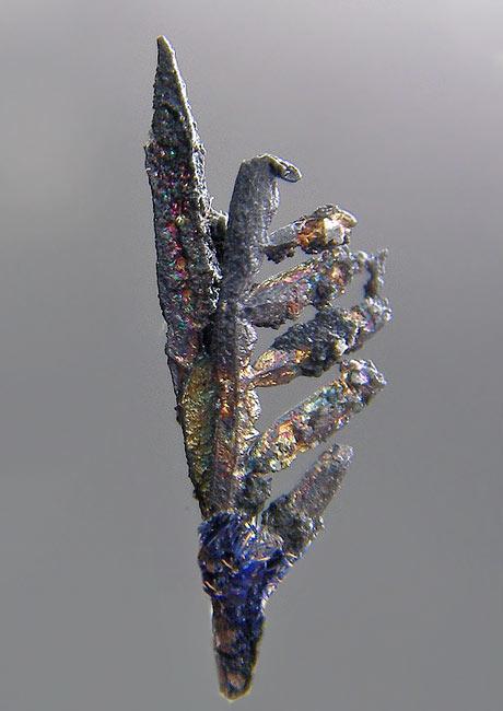 No.74 Silver