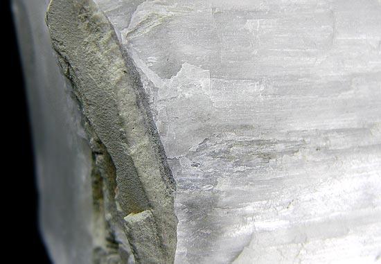 No.175 Ulexite