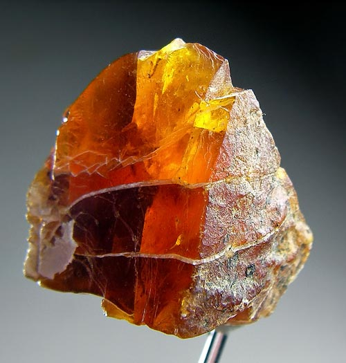 No.472 Amber