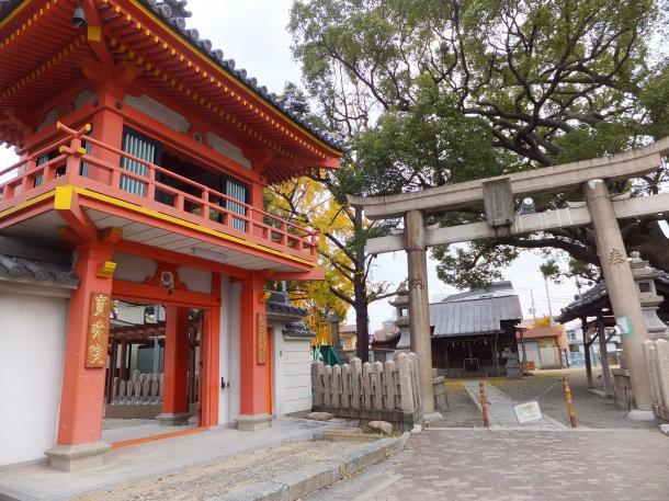 金蓮寺と素戔嗚神社