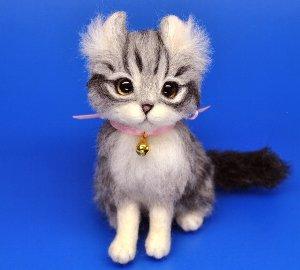 アメリカンカール猫12-07 056