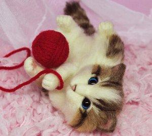 白キジトラ仔猫12-11 001