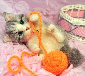 白グレー猫12-09 039