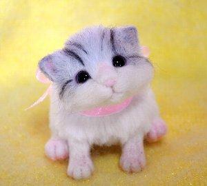 白サバトラ仔猫12-12 079