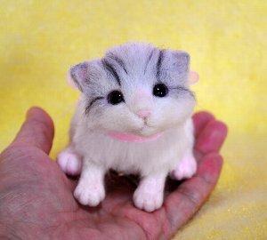 白サバトラ仔猫12-12 105