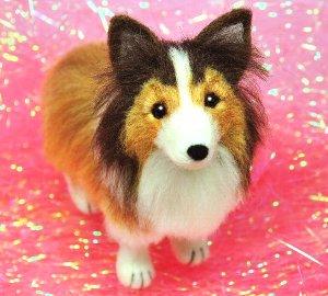 シェルティ犬12-12 028