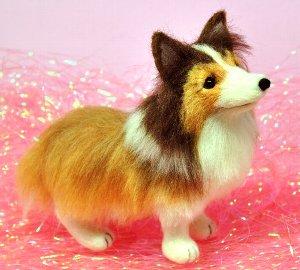 シェルティ犬12-12 038