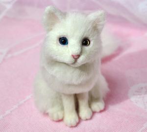 オッドアイ白猫13-01-25 039