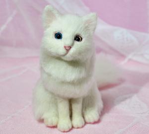 オッドアイ白猫13-01-25 056