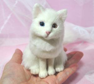 オッドアイ白猫13-01-25 093