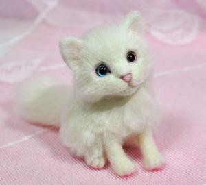 オッドアイ白猫13-01-25 070