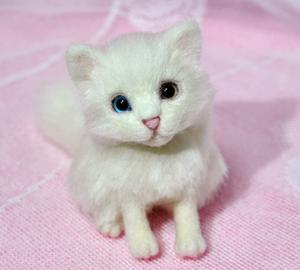 オッドアイ白猫13-01-25 058