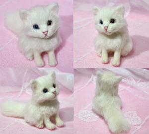 オッドアイ白猫13-01-25 0049
