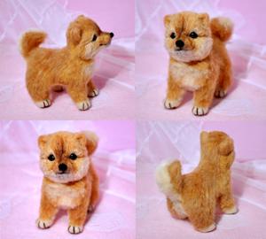 豆芝犬13-01-31 014