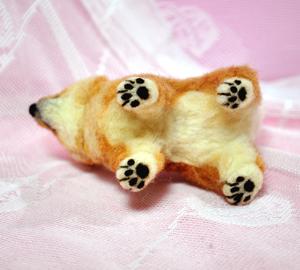 豆芝犬13-01-30 028