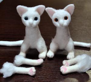 猫13-02-03 003