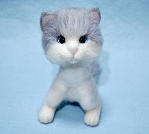 猫13-02-07 006