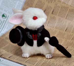 白ウサギ13-02-20 009