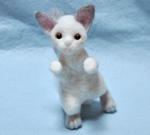 猫製作中13-03-03 004