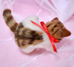 ミニキジトラ子猫13-03-13 012