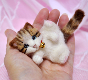 ミニキジトラ子猫13-03-13 014