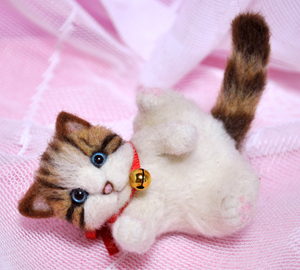 ミニキジトラ子猫13-03-13 002