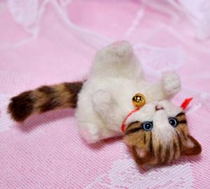 ミニキジトラ子猫13-03-13 025