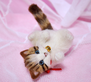 ミニキジトラ子猫13-03-13 003