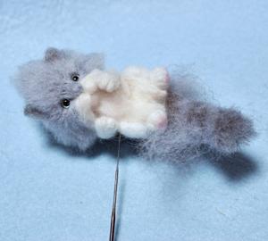 ミニサバトラ子猫13-03-14 004