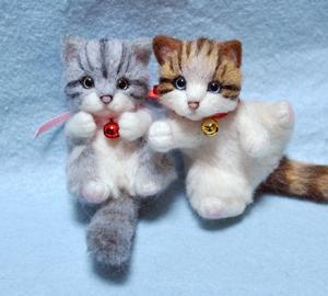 ミニサバトラ子猫13-03-16 011