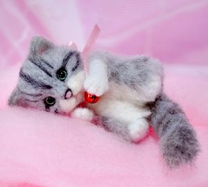 ミニサバトラ子猫13-03-17 002