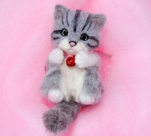 ミニサバトラ子猫13-03-17 008