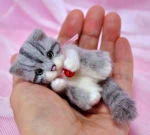 ミニサバトラ子猫13-03-17 021