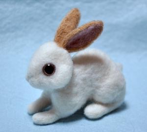 ウサギ茶13-03-19 002