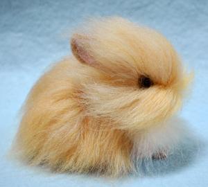 ウサギ茶13-03-19 010
