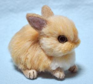 ウサギ茶13-03-19 012