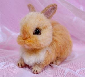 ウサギ茶13-03-20 005