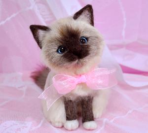 バーマン猫13-03-27 001