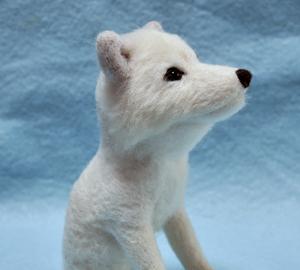 北海道犬13-04-06 011