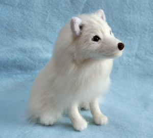 北海道犬13-04-09 002