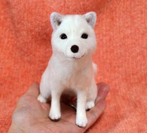 北海道犬13-04-09 052