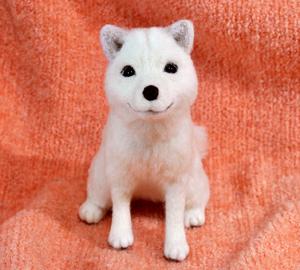 北海道犬13-04-09 019