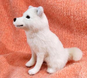 北海道犬13-04-09 026