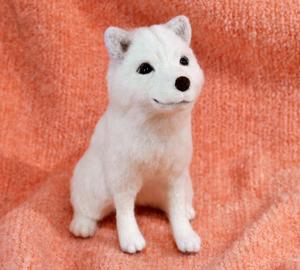 北海道犬13-04-09 021