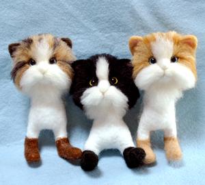 3匹の猫130529 013