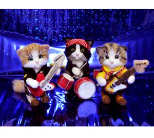 3匹の猫130605 010