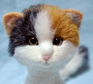2猫+プードル130629 013