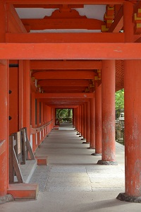 kasugajinjya-torii.jpg