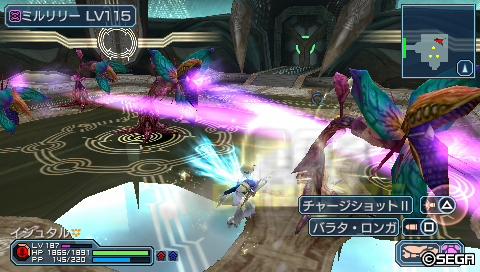PSP213_リリー畑
