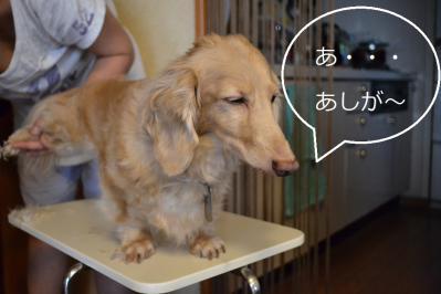 010_20120807213619.jpg